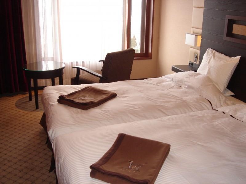 Myoko Kogen Akakura New Hotel