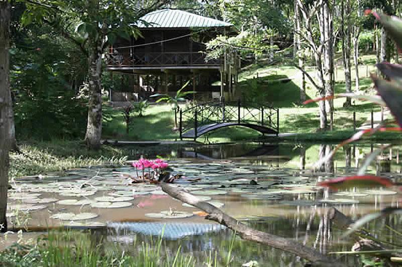 Hacienda Jacana