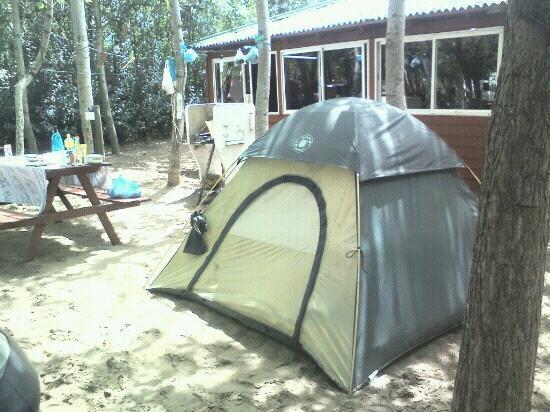 Camping Estancia El Carmen