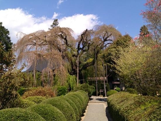 Jiun-ji Temple