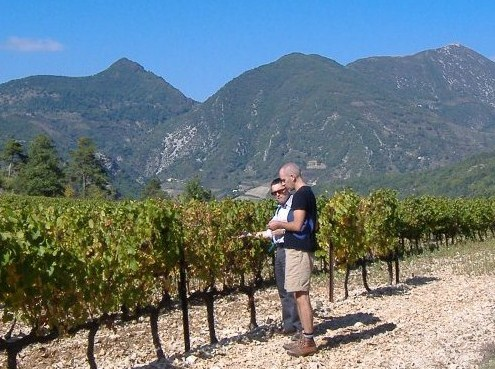 Rhone Wine Tours
