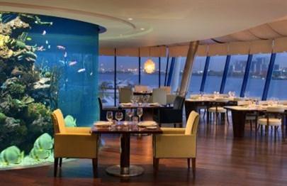 Aquarium & Vines Wine Bar