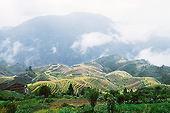 Fanpai Miao Nationality Village