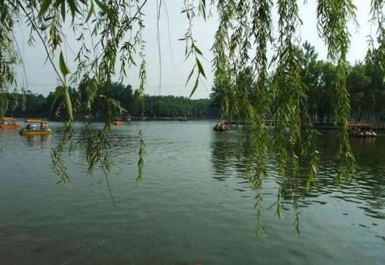 Longhu Lake