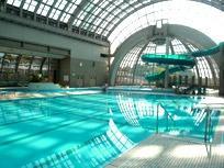 Kotehashi Onsui Pool