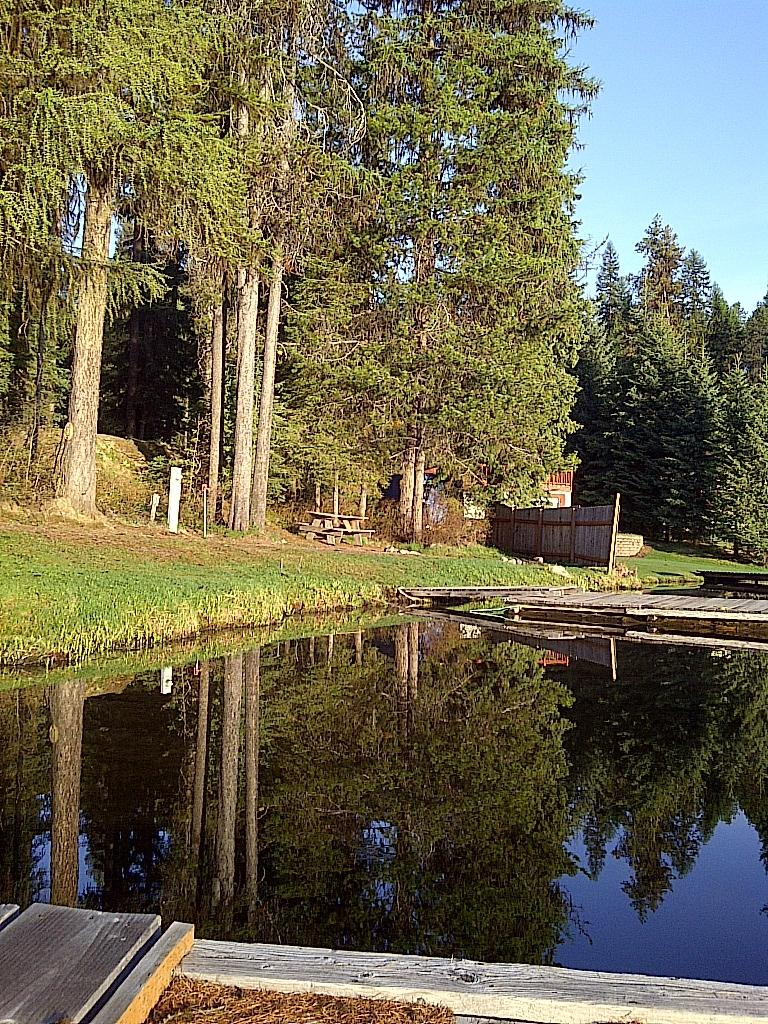 Beaver Lodge Resort