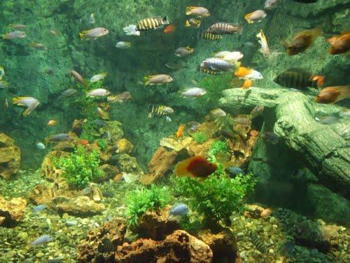 Gaziantep Zoo