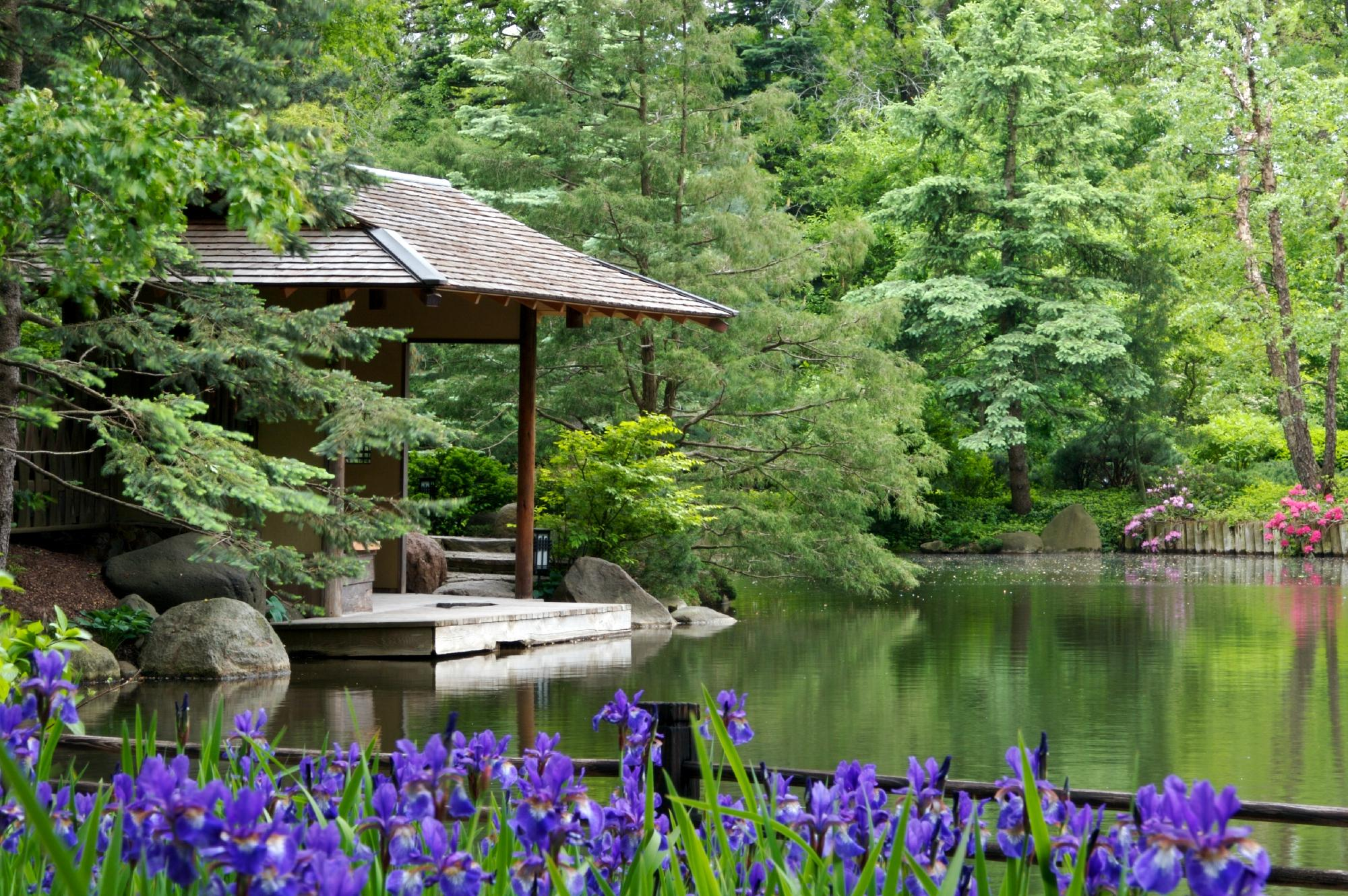 Japanese Garden anderson japanese gardens (rockford, il): top tips before you go