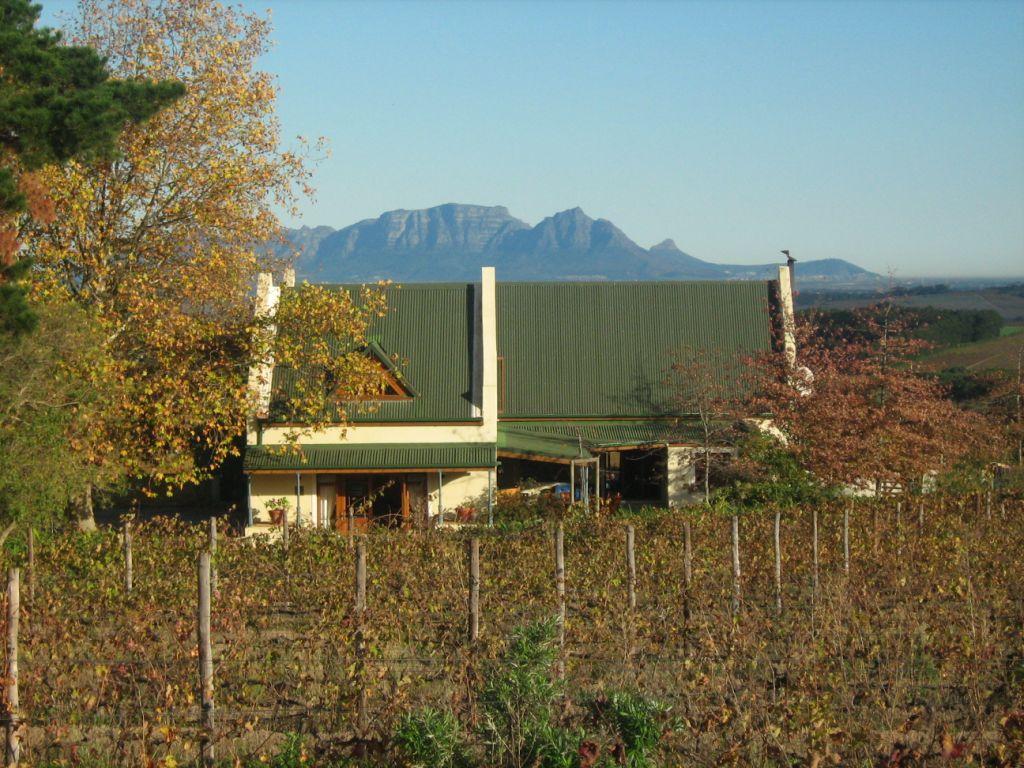 Grangehurst Winery