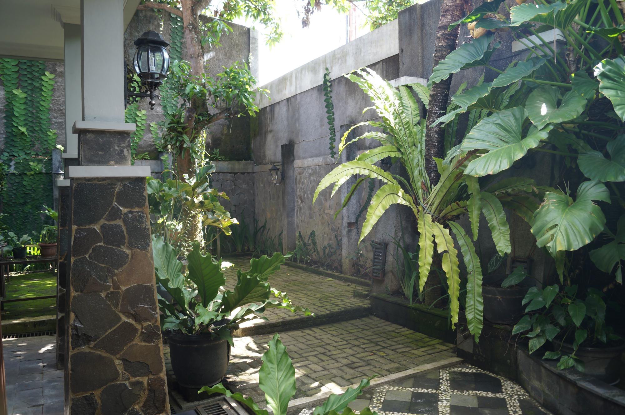 roemah oma guest house reviews yogyakarta indonesia tripadvisor