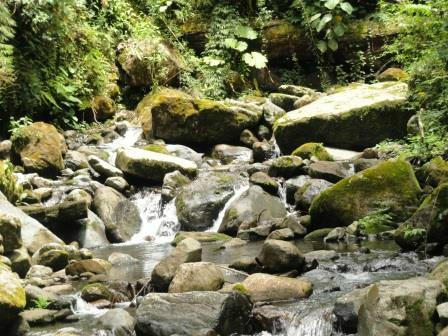 Quetzal Trail