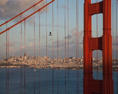 Road Trip: San Francisco Walking Tours