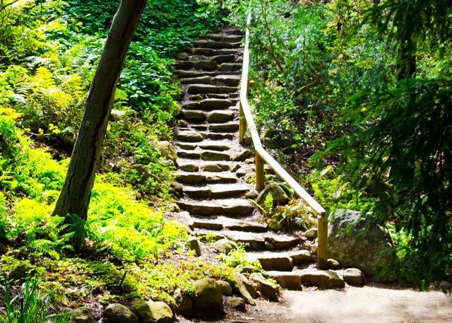 Exceptionnel Santa Barbara Botanic Garden