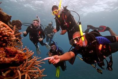 Phuket Dive Shop