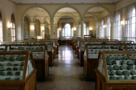 """Museo di Mineralogia """"Luigi Bombicci"""""""