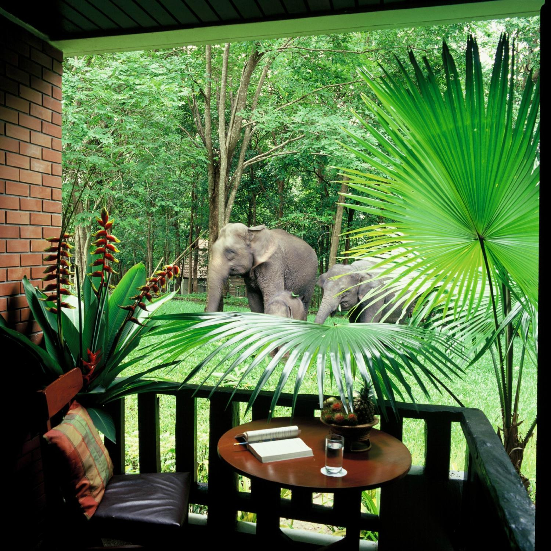 ทรัพย์ไพรวัลย์รีสอร์ตและศูนย์การเรียนรู้ช้าง
