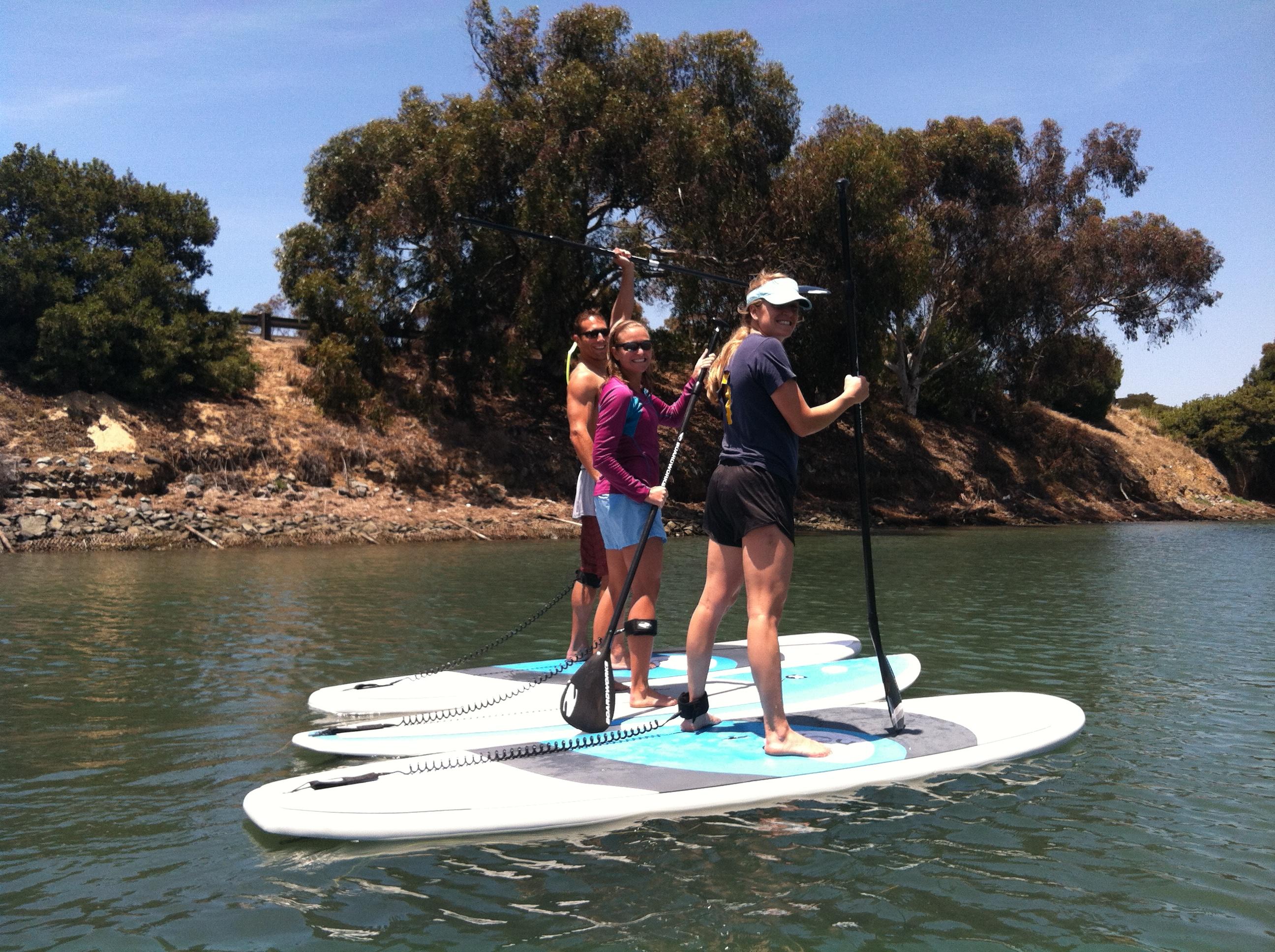 the top 10 things to do near hilton garden inn carlsbad beach