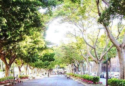 Rambla de Santa Cruz