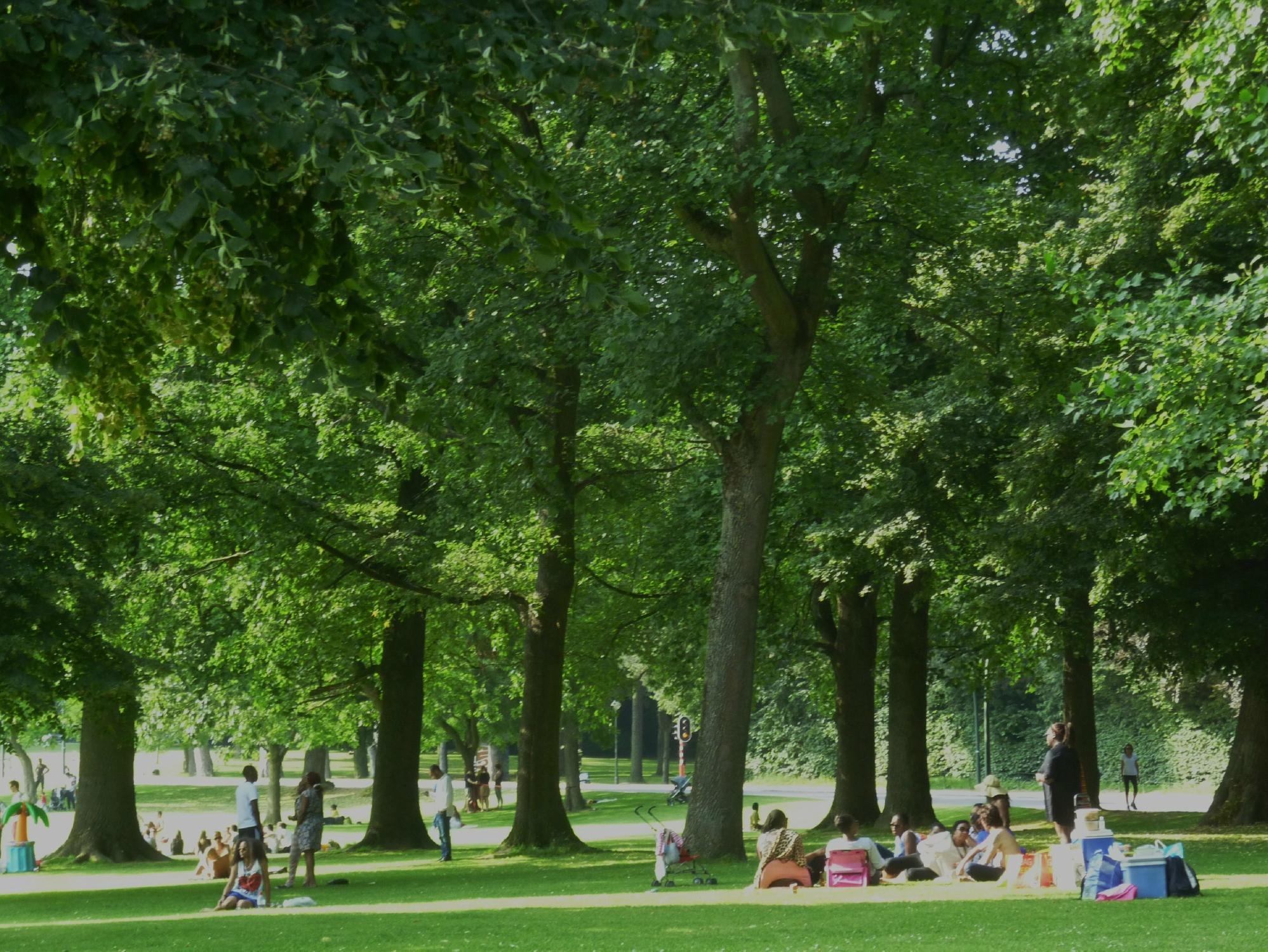 Bois de la cambre and foret de soignes brussels belgium for Bois de la chambre bruxelles