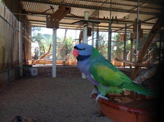 12 Mile Bird Park