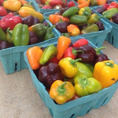 Bluffton SC Farmers Market