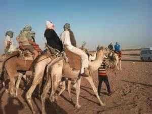 Trips in Sharm