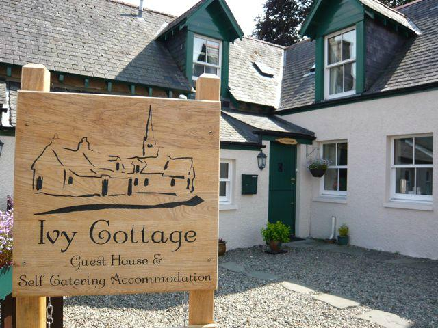 Ivy Cottage Guest House