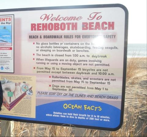 Reboboth Beach Boarding School