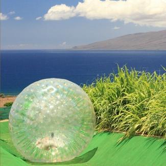 Paradise Eco-Adventures