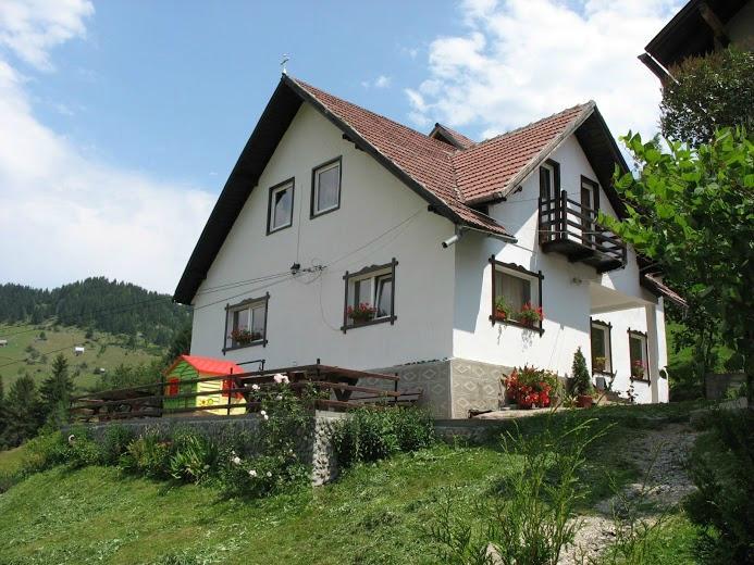 Dragoslovean Guesthouse
