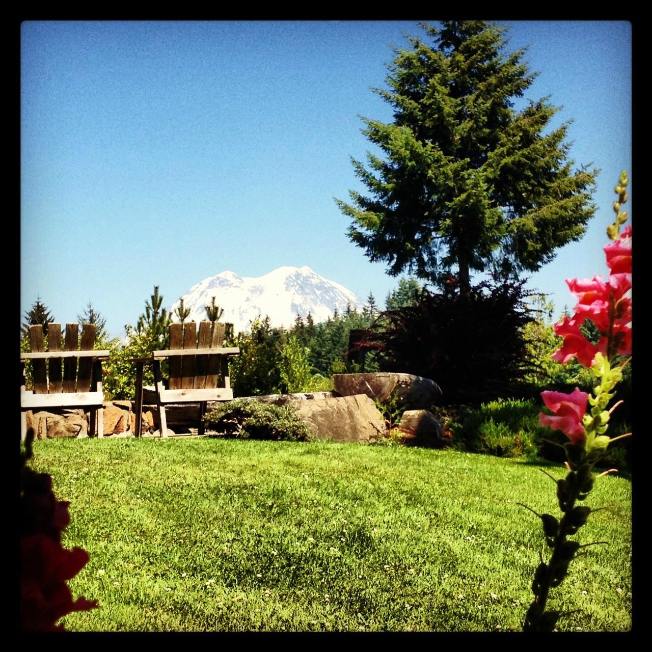 Rainier Mountain Lodge