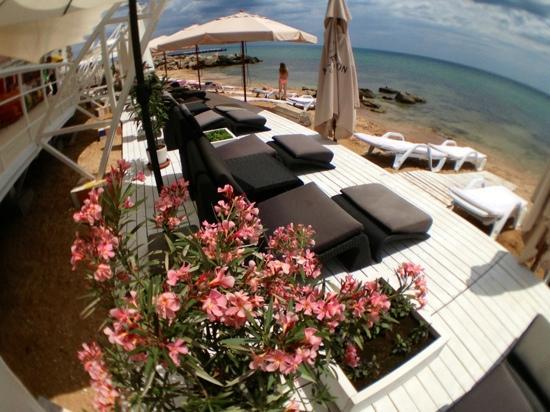Beach Club 117