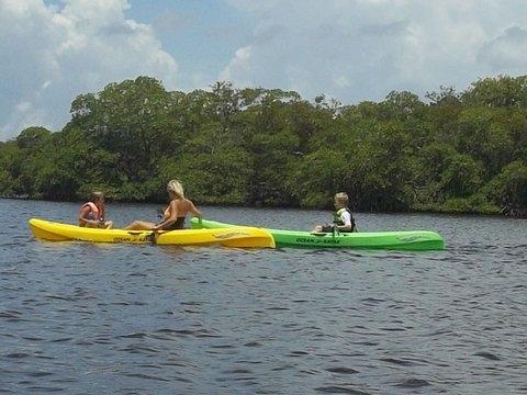 Pine Island Paradise Paddling Day Tours