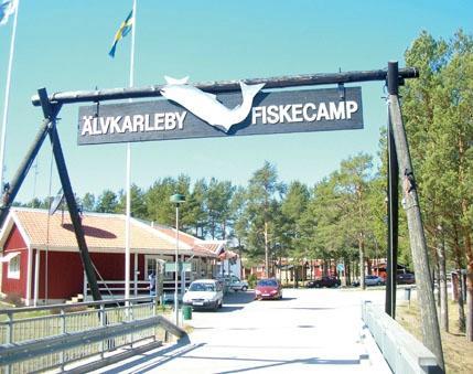 Alvkarleby Fiskecamping