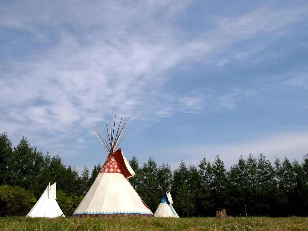 Sussex Tipi Holidays