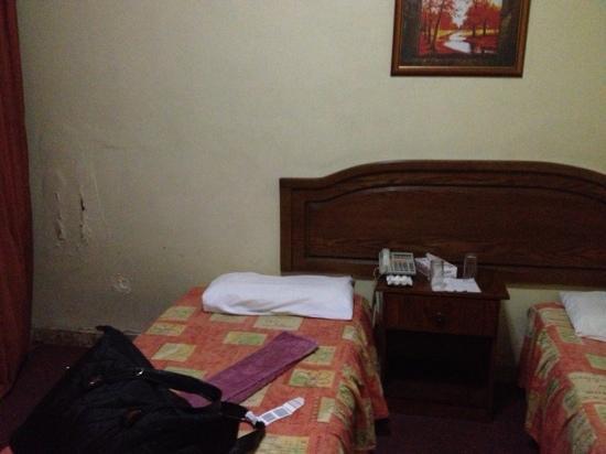فندق باليس