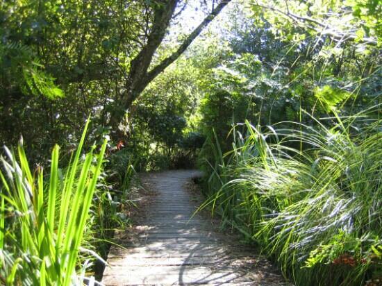 Reserve Naturelle de l'Etang Noir