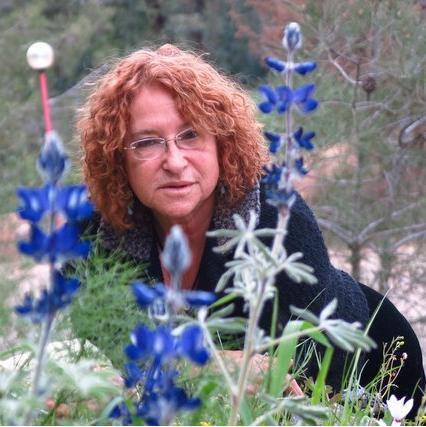Miri Lowenberg's Israel Tours