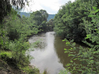Spadonis Reserve