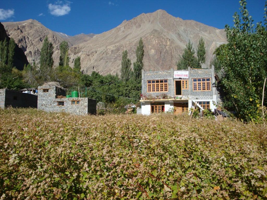 Maha Guest House
