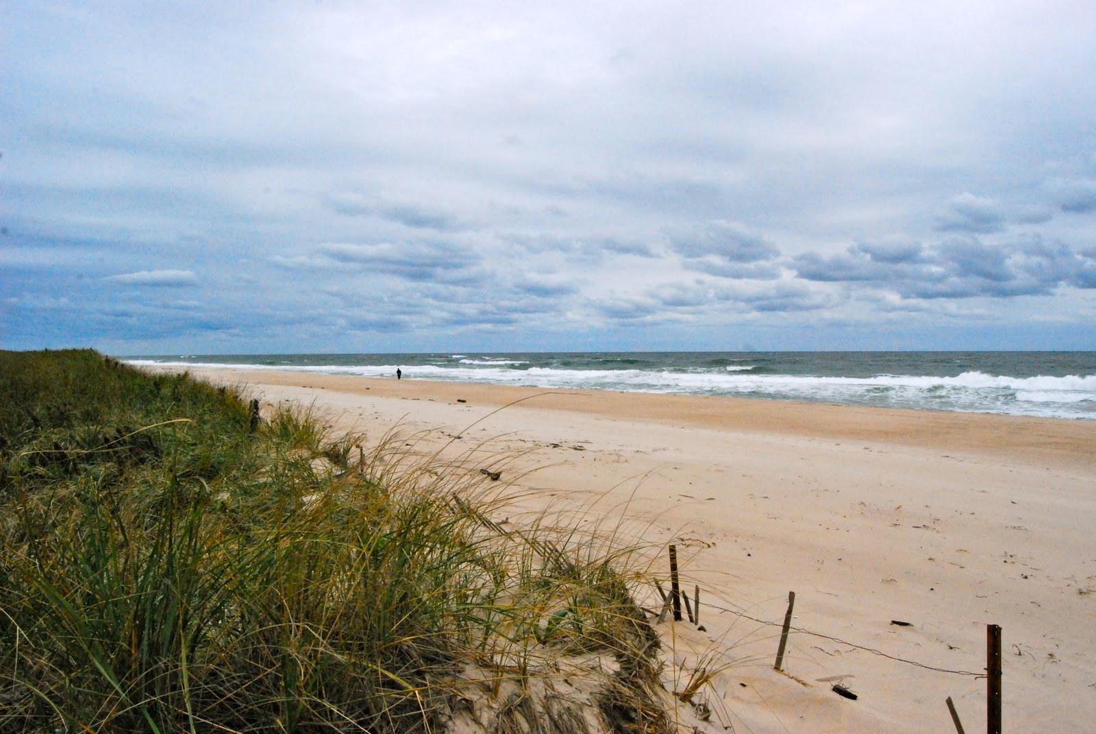 Hamptons paisagens