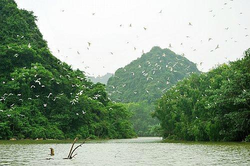 Ninh Binh Tours - Day Trip