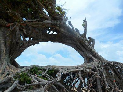 Maxaranguape Beach