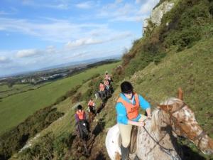Caherconlish Equestrian Centre