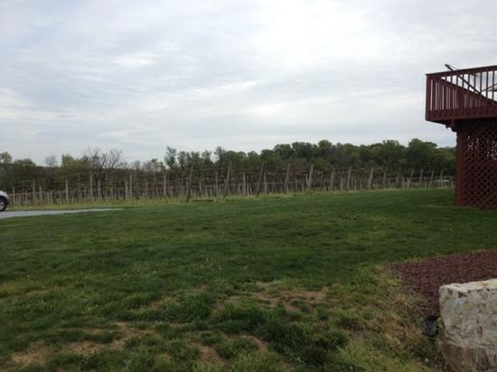 Kreutz Creek Vineyards