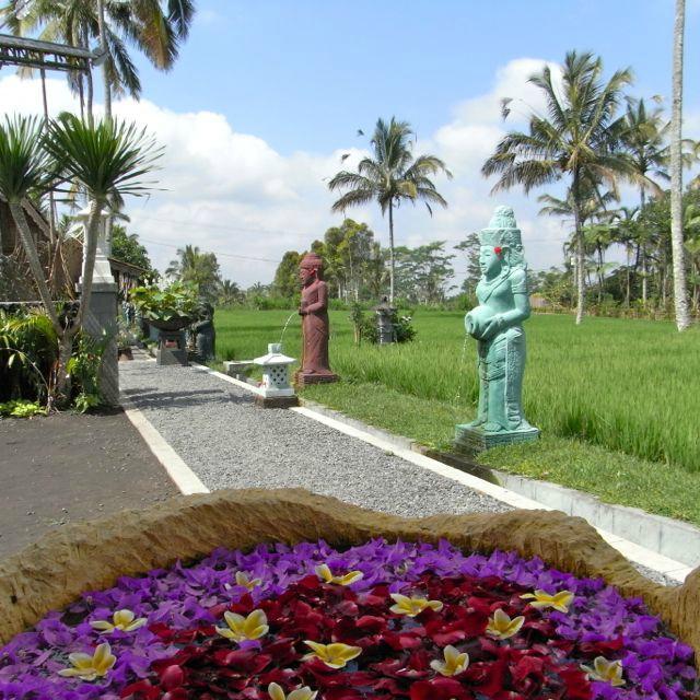 Sharing Bali