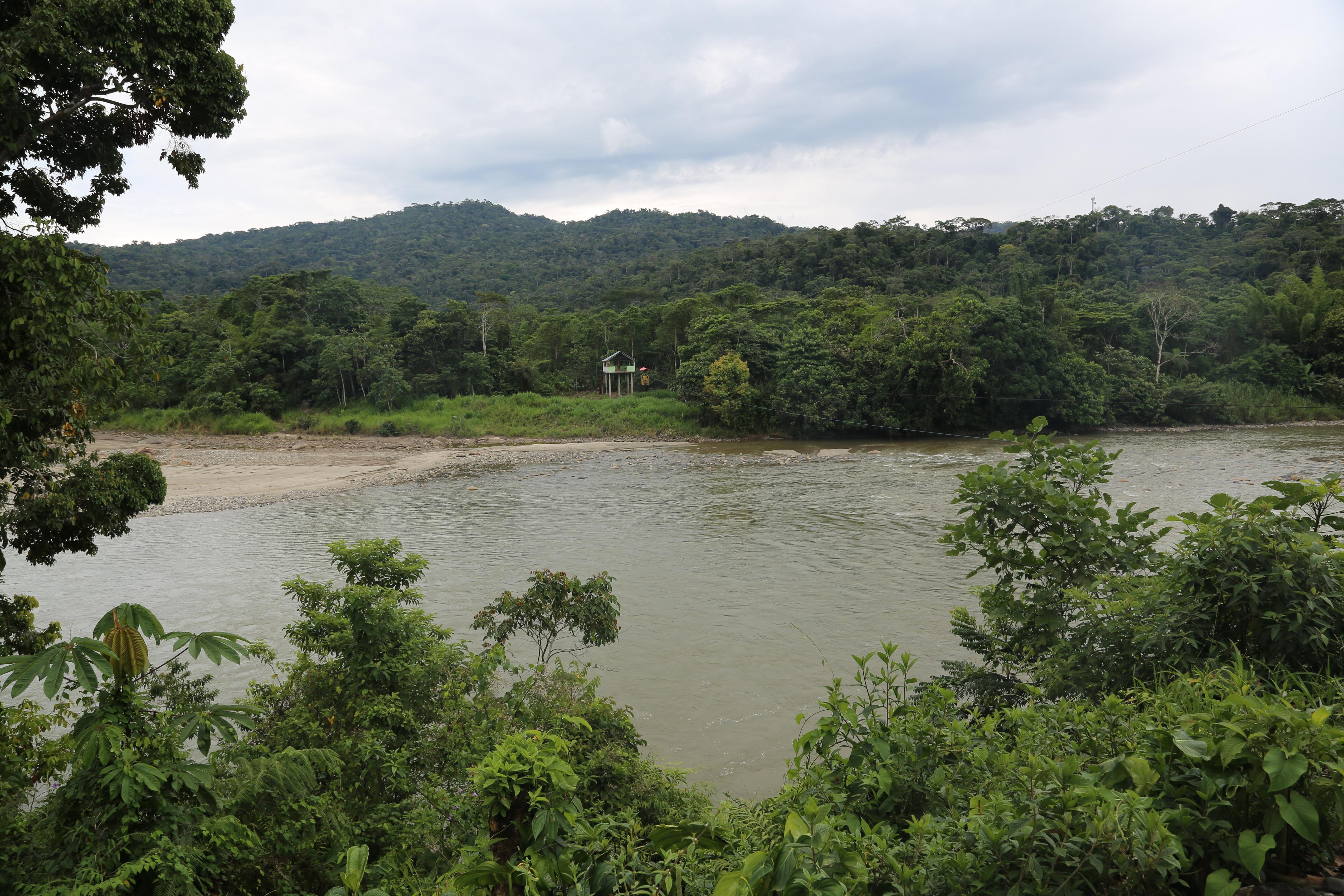 Sacha Runa Jungle Lodge