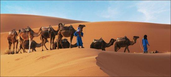 Quiet Merzouga Desert - Day Tours