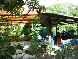 Hospedaje Ecologico Nahual