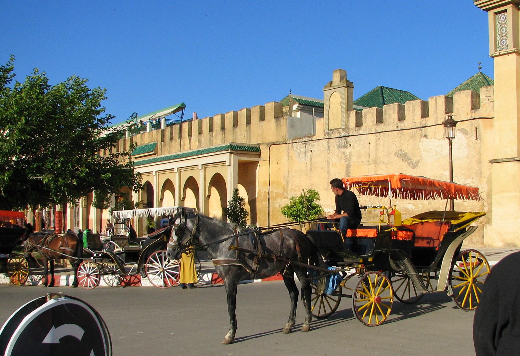 The Top 10 Things to Do Near Jardin Majorelle Marrakech TripAdvisor